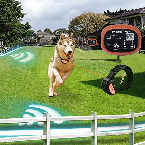 Dr.Tiger 1 Receiver Electric Dog Fence