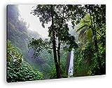 deyoli Wasserfall im tropischem Regenwald Format: 80x60 als