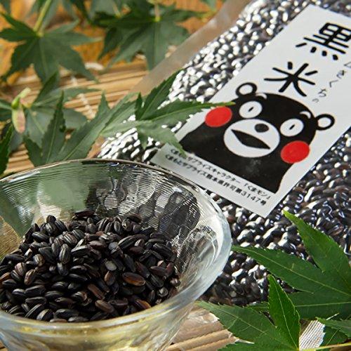 九州の大自然しらき『黒米』