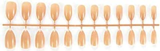 VIKSON INTERNATIONAL 24 pc set Nude candy color UV Gel finish Tip Artificial Nail Extension With 2 gm Nail Glue