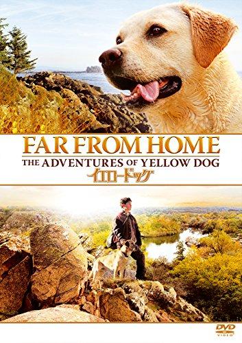Jesse Bradford - Far From Home: The Adventures Of Yellow Dog [Edizione: Giappone] [Italia] [DVD]