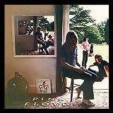 Pink Floyd ACPPR48123 Ummagumma - Funda para álbum (12 pulgadas)...