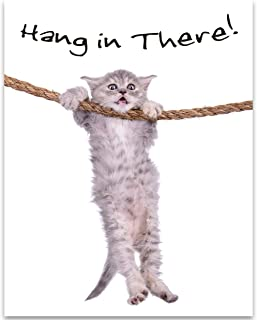 cat pictures hang in there