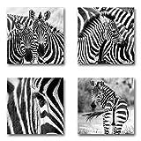 Zebras - Set A schwebend, 4-teiliges Bilder-Set je Teil