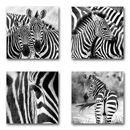Zebras - Set A schwebend, 4-teiliges Bilder-Set je Teil 29x29cm, Seidenmatte Moderne Optik auf Forex, UV-stabil, wasserfest, Kunstdruck für Büro, Wohnzimmer, XXL Deko Bild