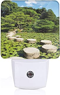 Colorful Plug in Night,Stone Path in Japanese Garden Lake with Lotus Leaves Meditation Nature Scenery,Auto Sensor LED Dusk to Dawn Night Light Plug in Indoor for Childs Adults