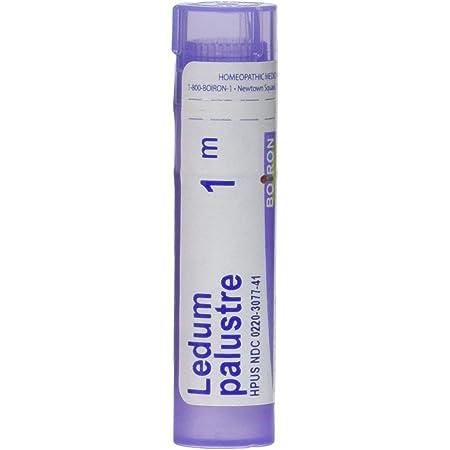 Boiron Ledum Palustre 1m, Purple, 80 Count