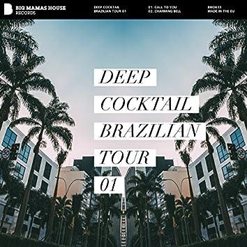 Brazilian Tour 01
