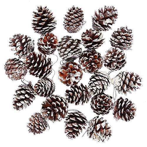 Sunshine D 12 Pcs Cônes De Pin, Noël Cônes de Pin Naturel Arbre Sapin De Pendaison Ornements pour la décoration de Sapin de Noël, Blanc