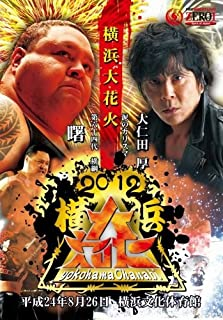 PROWRESTLING ZERO1~2012横浜大花火~ [DVD]