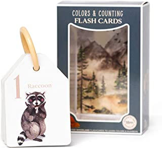 Berry Lane Colors & Counting Flash Cards | 21 Illustrated Woodland Theme Toddler Flashcards | Eco-Friendly | Removable Ring