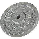 GORILLA SPORTS Hantelscheibe Gusseisen 20 kg - Gewicht mit 30/31 mm Bohrung in Silber