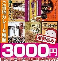 【ヘルシー&ビューティー・6種類のご当地カレーセット】
