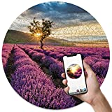 Wooden Jigsaw Puzzles for Adults - Provence Unique Round Puzzles 3IN1 - Jigsaw Puzzle - AR Game - Wall Décor - Gift for Puzzle Lover - Size Hard 19.6 inch Approx. 455 Pieces