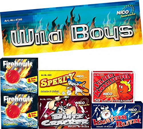 Nico Europe GmbH Wild Boys, 6 Schachteln sort, Kl.1, bunt