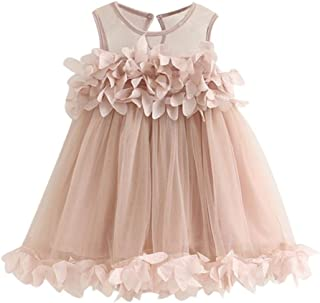 Baby Girls Princess Tutu Dress, Lace Flower Pageant Sleeveless Mesh Print Vest Dresses