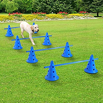 PawHut Dog Agility Equipment Play Run Jump Kit Indoor Outdoor Exercise Pet Puppy Training Sets w/4 Cross Bars and 8 Conical Barrels 5