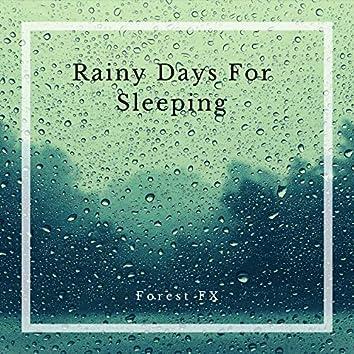 Rainy Days For Sleeping