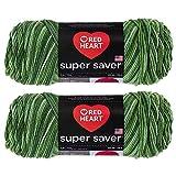 Bulk Buy: Red Heart Super Saver (2-Pack) (Green Tones, 5 oz Each Skein)