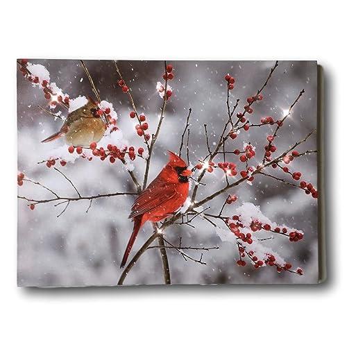 Cardinal Gifts: Amazon.com