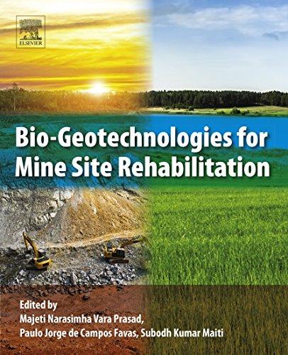 Bio-Geotechnologies for Mine Site Rehabilitation (English Edition)