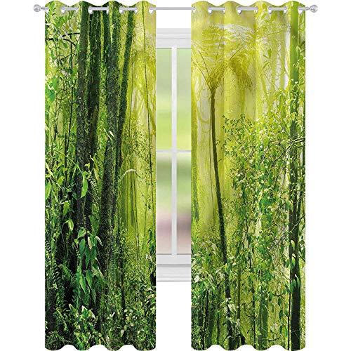 jinguizi Cortina de ventana verde tropical Amazon Forest W52 x L84 cortinas opacas para dormitorio de los niños