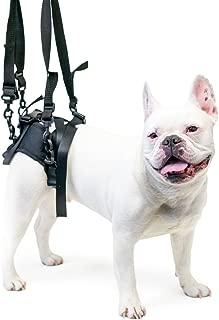 Best walkin lift rear harness Reviews