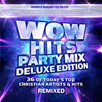 Wow Hits Party.. -Deluxe-