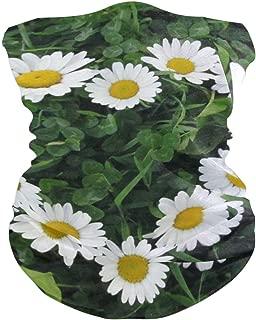daisy headband for edc