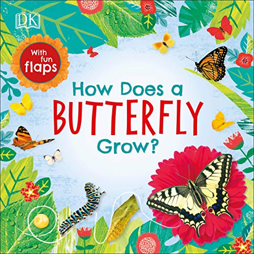 How Does a Butterfly Grow? (Life Cycle Board Books)