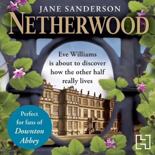 Netherwood audiobook cover art