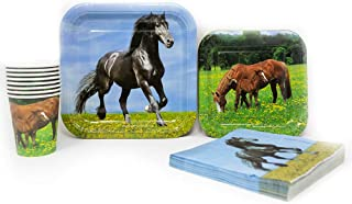 Horse Party Supplies Pack (65+ Pieces for 16 Guests!), Horse Party, Horse Tableware
