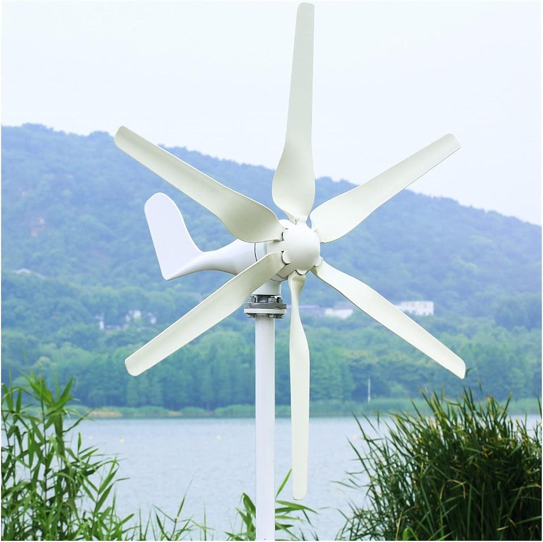 Aerogeneradores Generador de energía de la turbina de viento horizontal de 1000W 24V / 48V 3/5 Cuchillas de la velocidad de inicio 2m / s ajuste para lámparas de calle Energía solar y eólica