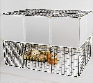 Amazon.es: LUOTIANLANG - Gatos: Productos para mascotas