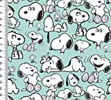 Fabrilogy Bio Jersey Snoopy Happiness, Mint-schwarz/ab 50