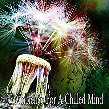 55 Ambience for a Chilled Mind