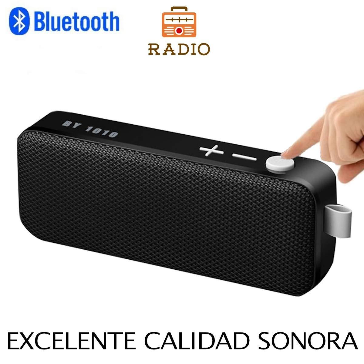 Altavoz Bluetooth con Radio, Unicview BY1010 Estéreo HD Altavoces ...