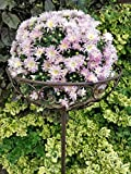 XL Blumenkorb aus Metall zum stecken - 120 cm -