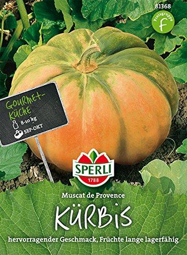 Kürbis, Muscat de Provence