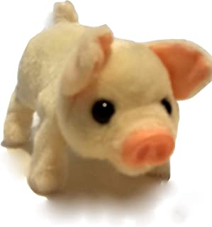 Best battery operated pigs Reviews