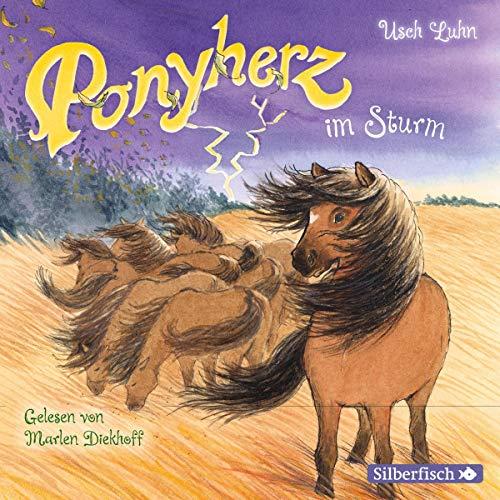 Ponyherz im Sturm cover art