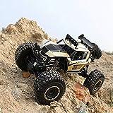 4WD Off-Road de la roca de 2,4 GHz vehículo de control remoto de coches de gran tamaño camión de juguete RC Car Escalada de carga de carreras de coches for niños y adultos al aire libre exclusivo de C