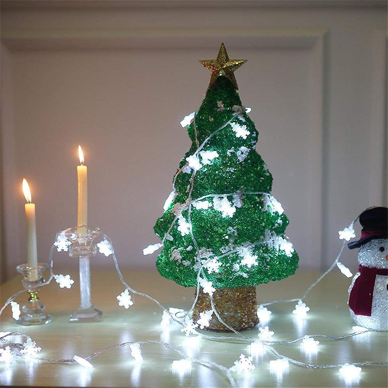 皮肉防腐剤盗賊Homecube LEDイルミネーションライト ソーラーライト 30球 雪型 クリスマス飾り パーティー 結婚式 誕生日 明暗センサーライト ガーデンライト 屋内屋外 防水 長さ6.5m 新年祝い (ホワイト)