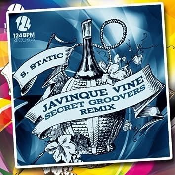 Javinque Vine