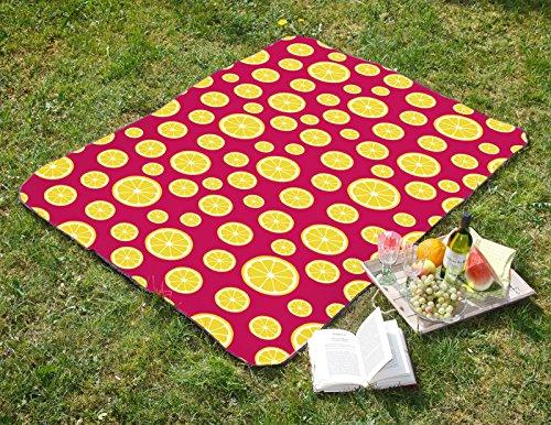 heimtexland Picknickdecke Zitrone in 130 x 170 cm Campingdecke WASSERABWEISEND Strandmatte faltbar mit Tragegriff Isomatte pink Festival Decke Typ527