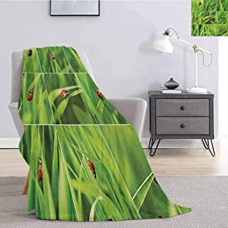 Ladybug Soft Throw Blanket for Bed Couch Ladybug Over Fresh Grass Collection Divided Collage Vibrant Life Lawn Foliage Theme for Living Room Bed or Couch Blanket W57 x L74 Inch Green Red