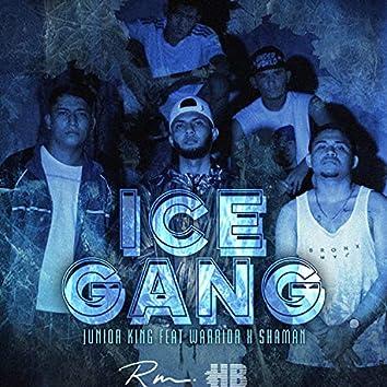 IceGang