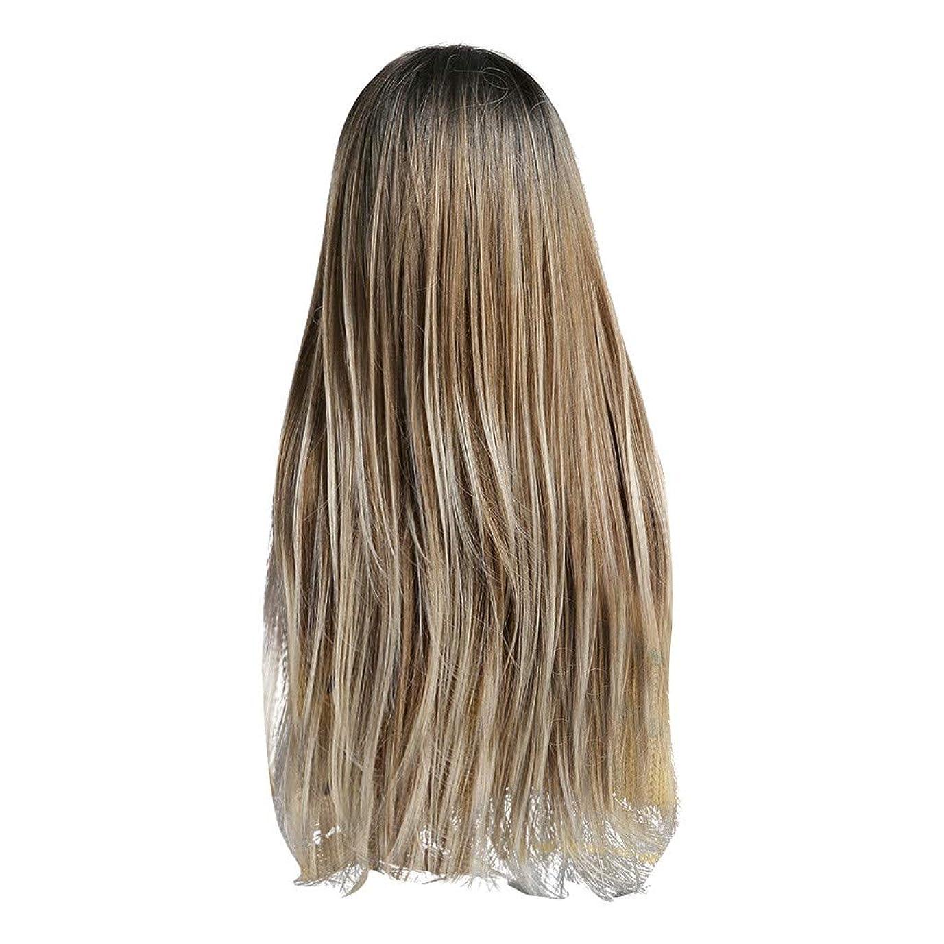 にぎやかマラドロイトぬいぐるみLazayyii かつら女性自然な3色 グラデーション化学繊維毛髪 (A)