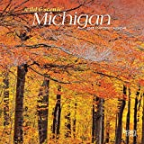 Michigan Wild & Scenic 2020 7 x 7 Inch Monthly Mini Wall Calendar, USA United States of America Midwest State Nature