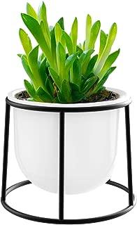 Lewondr Ceramics Flowerpot and Iron Stand Set, Simple Design Flower Pot Bracket Plants Succulents Planter Container for Garden Patio Balcony Décor, Black Stand + White Pot, Style 01